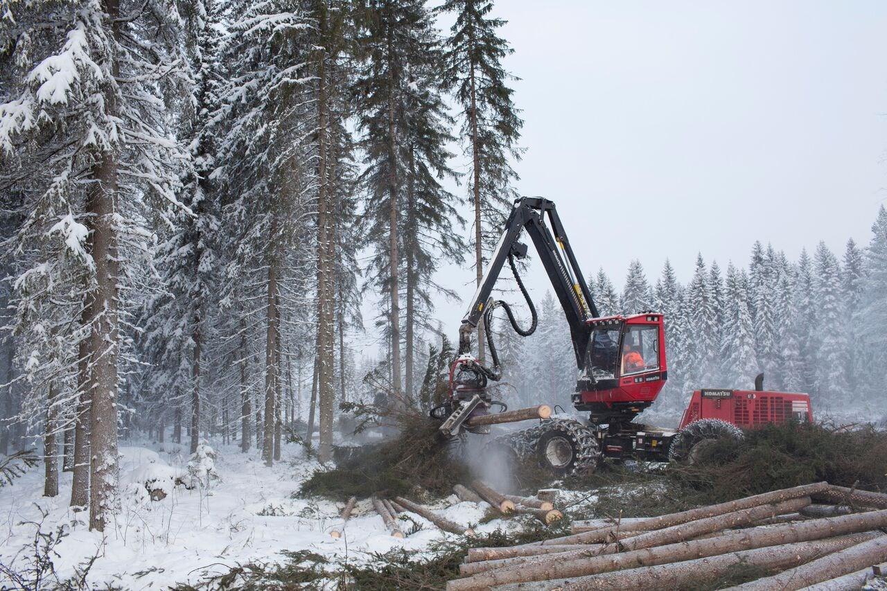 Metsapalvelu_Hiekkala_002
