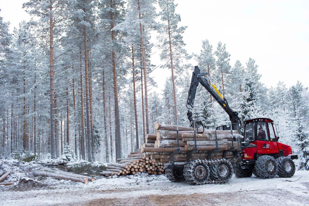 Metsapalvelu_Hiekkala_004